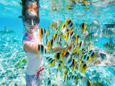Giftun Island Snorkeling Tour