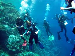 Sharm Tour Package